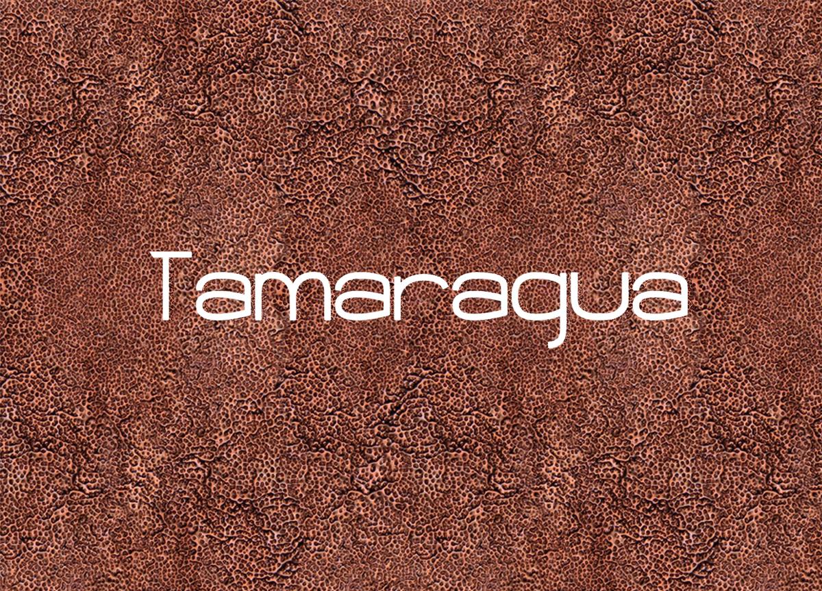 comuicarsinpalabras, grafica publicitaria, carteleria, diseño, diseño gráfco, branding, diseño de interiores, stand